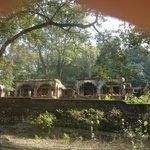 de verlaten en door het oerwoud overwoekerde Beatles ashram