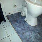 Mould and Lifting Vinyl tiles, rot beside the shower