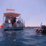 diving platform off of the Rotilla.