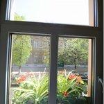 22号室窓からの眺め
