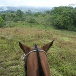 The view from Mariposa - great horse!