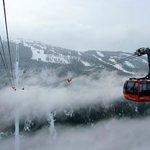 Peak to Peal Gondola
