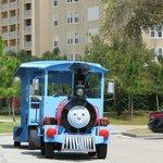 train to take you around resort