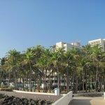 The Hilton -Caribe