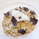 Risotto with Black Truffle and Sole