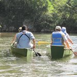 birding and canoeing