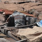 Worker in the tannery