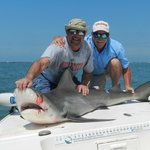 Sandbar shark with Jim the shark & Greg