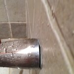 Water damage everywhere in the bathroom shower