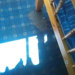 Der Teppich im Zimmer