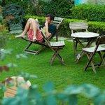 Garden at International Travellers' Hostel, Varanasi