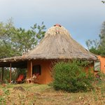 Bamboo Lodge In January