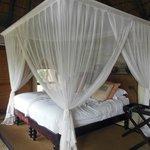 Le beau lit avec une moustiquaire utile contre les arraignées !!