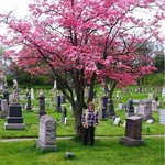 Spring is a great time to visit Historic Jersey City & Harsimus Cemetery