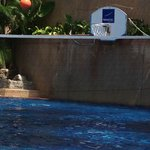 basket ball in the pool