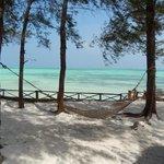 Hammock by the beach near the restaraunt