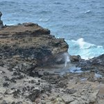 The Blowhole on Maui  March 2014