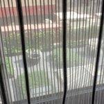 auto blinds