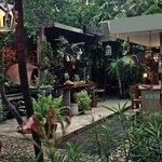 Bild från Casa Jaguar Tulum