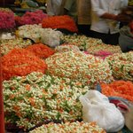 Colours of the Flower Market