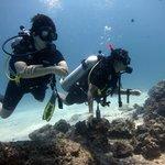 FUN PADI Open Water Divers