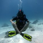 Lean to Dive in Phuket