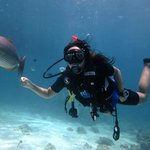 PADI Open Water Course 3
