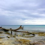 Walk to Playa del Carmen