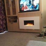 "40"" TV, Wii, DVD Player, Fireplace"