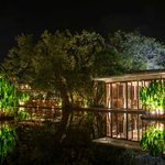 Ficus Restaurant