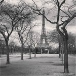 The Eiffel tower, a quick walk from the hotel