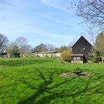 Barn and grounds