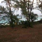 Beachfront clothesline