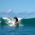 Gone Surfing @Hawaii !