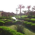 The beautiful green garden