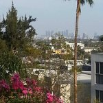 View of Hollywood Hills from our balcony