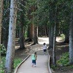 boardwalk around lake
