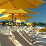 Alexandra Resort Beach