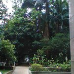 Área do parque