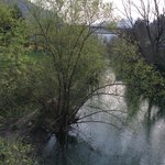 Spring at Fiume Lamone