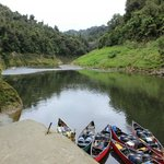 canoes on river