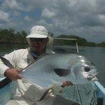 Incredible fish