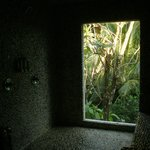 Very cool windowed shower area looking into the jungle