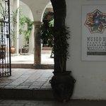 Museo de plantas sagradas