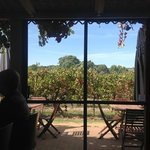 Ekhidna Winery is a great spot to spend the afternoon.