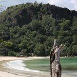 Very nice private beach