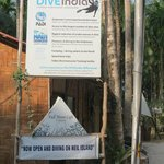 Dive india centre and the cafe