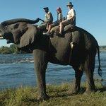 Next to the Zambezi River