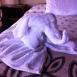 pliage des serviettes