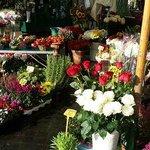 Flowers in Campo di fiori